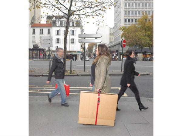 Carry Strap 2.5m Single