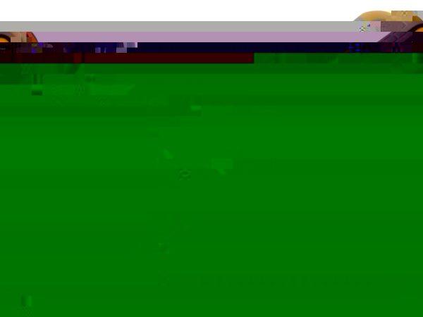 Screwdriver Terminal Tip 3.0 x 100mm