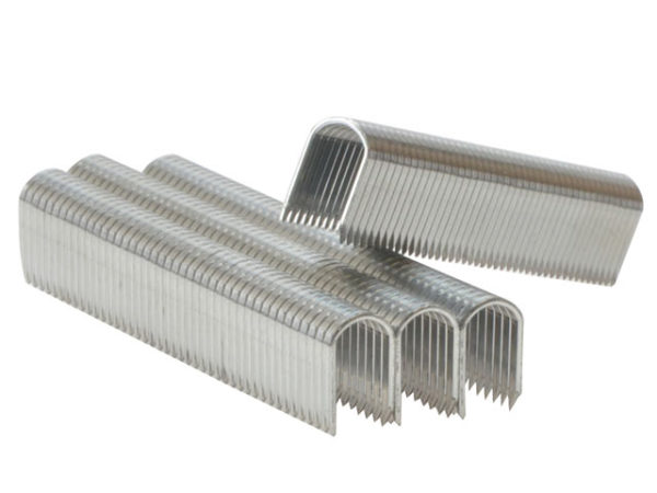 28/10 10mm DP x 5m Galvanised Staples Box 5 x 1000