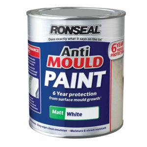 6 Year Anti Mould Paint White Matt 750ml
