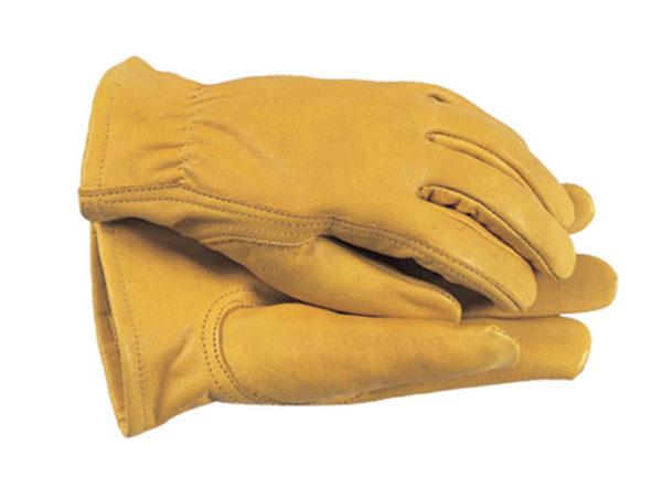TGL105M Premium Leather Gloves Ladies' - Medium