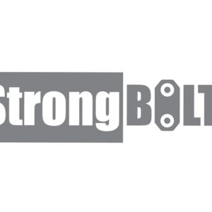 StrongBOLT 2103S 3 Lever Mortice Deadlock Polished Brass 81mm 3in Visi