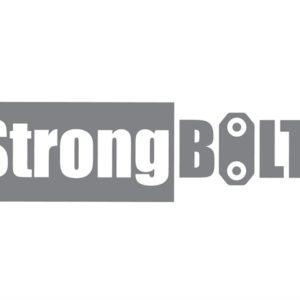 StrongBOLT 2203S 3 Lever Mortice Sashlock Polished Brass 68mm 2.5in Visi