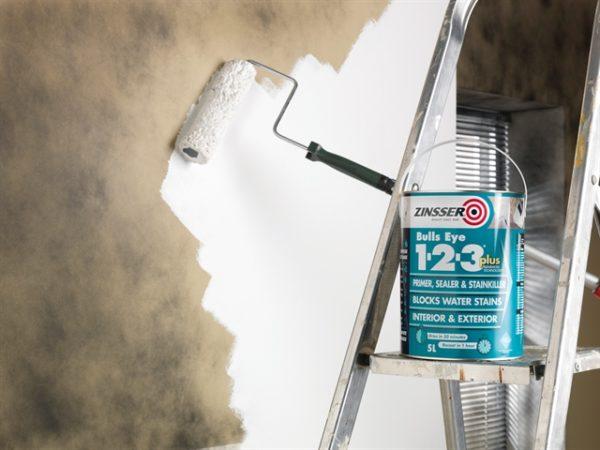 123 Bulls Eye Primer & Sealer Paint 2.5 litre