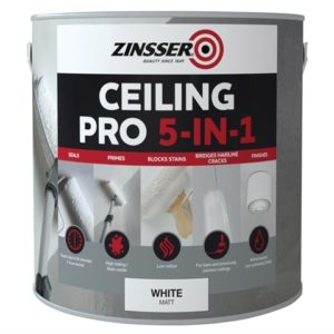 Ceiling Pro 5-in-1 2.5 Litre