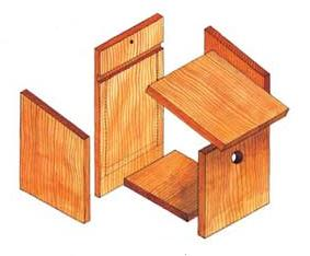 Build your own nestbox tool kit