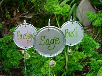 Tin can lid plant labels