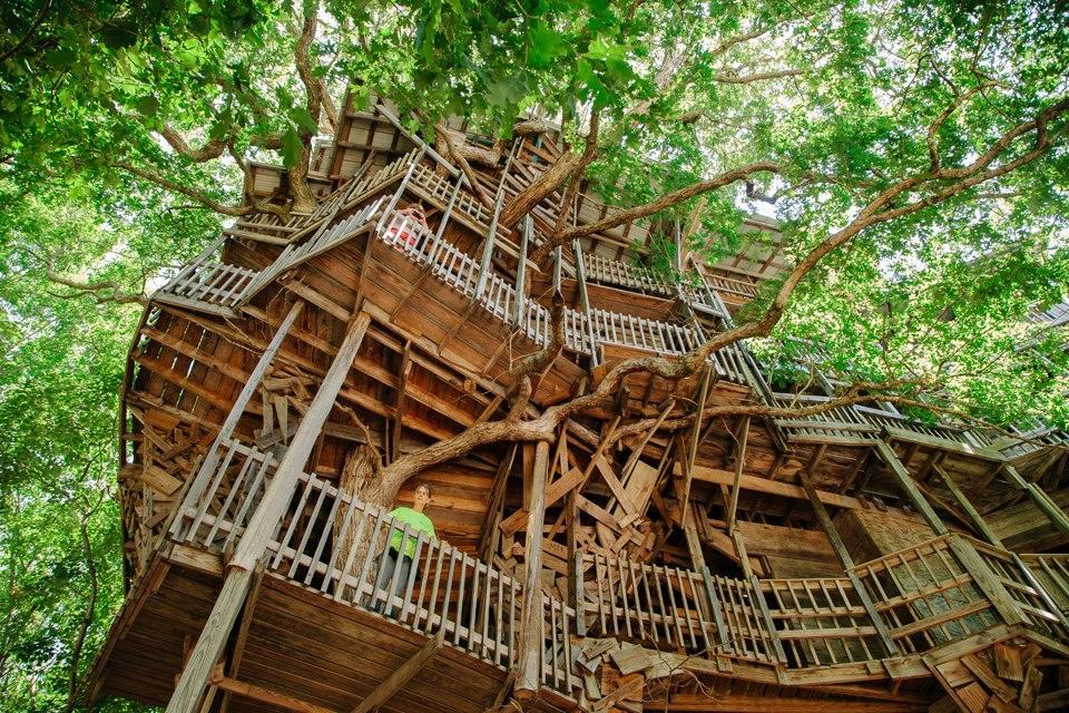 a huge treehouse