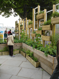 Allotment South Bank DIY Doctor Garden Inspiration at the Southbank Centre