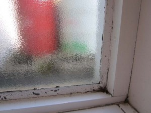 Black mould on window frame caused by condensation