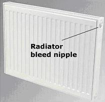 Radiator Bleed Valve