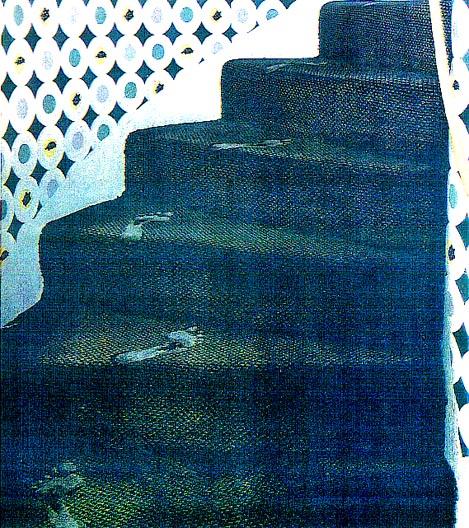 Footprint Stair Carpet
