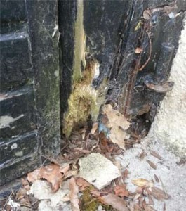 Rot in garage door frame