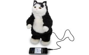 Cat Speakers
