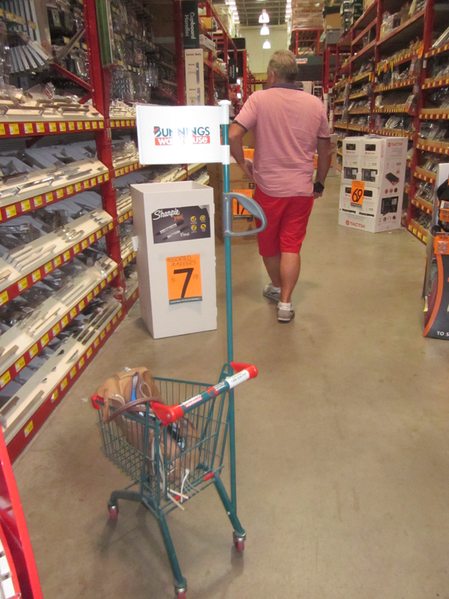 DIY Doctor in Bunnings Sydney Australia