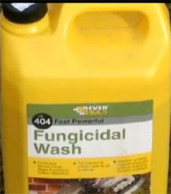 Fungicidal wash for cleaning paving, driveways and patios