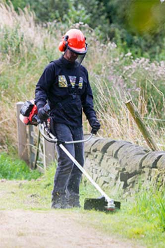 Using a strimmer