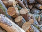 England Changes Laws on Burning Wet Wood and Coal to Improve Air Quality