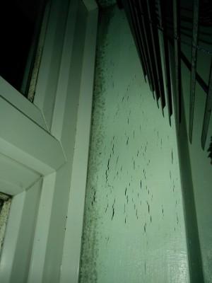 window - s.jpg