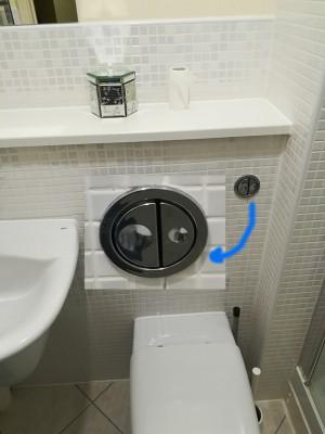 dual flush 3.jpg
