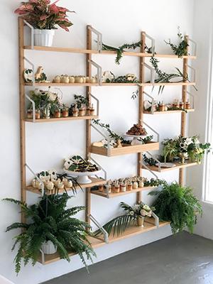 shelf 2.png