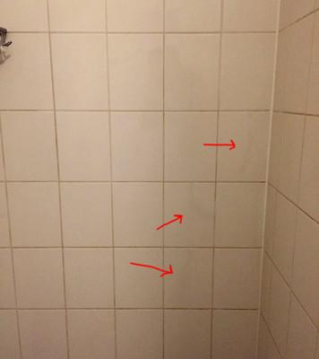 shower-wall-1.JPG