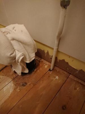 Toilet_waste_and_water_pipe.jpg