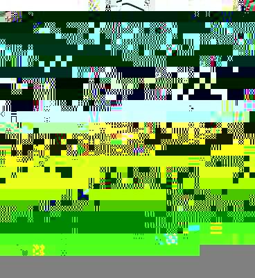 Direct System.jpg