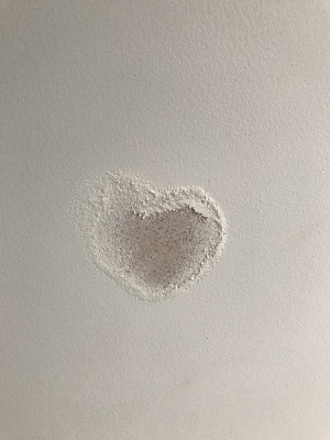 heart 324kb.jpeg