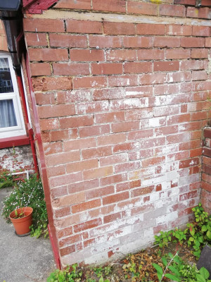 exterior outside wall of loo.jpg