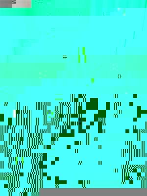 IMG_0334_1 (Small).jpg