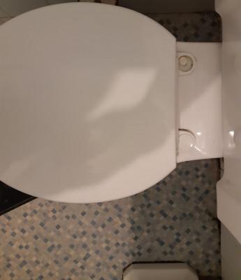 Toilet seat pic 1.jpg