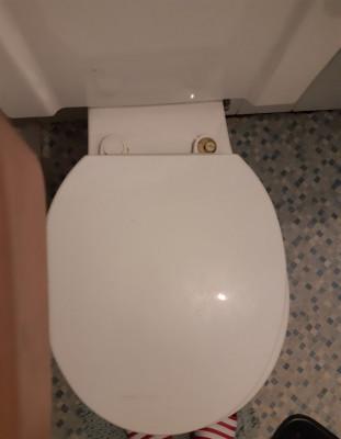 Toilet seat pic 3.jpg