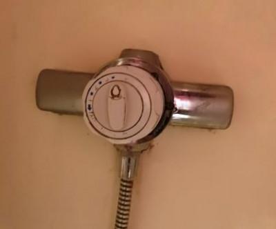 Shower Tap.jpg