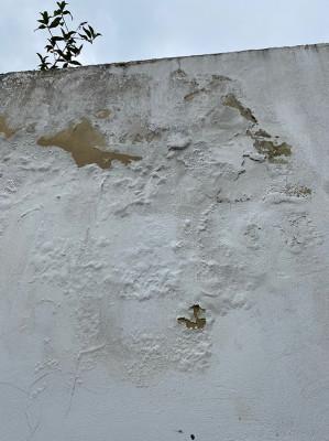 wall cracks.jpg