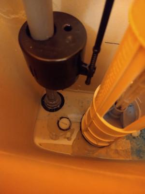 in_cistern.jpg