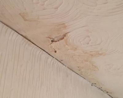 ceiling resized.jpg