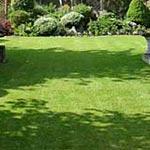 Repairs in the Garden