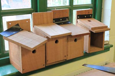A row of bird boxes in various stages of construction