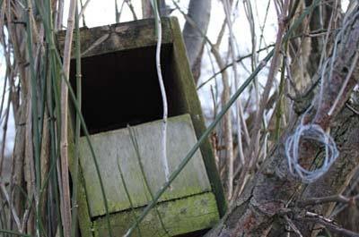Weathered bird box