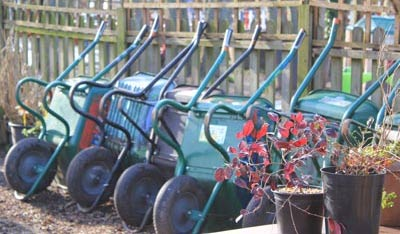 A row of wheelbarrows waiting for the volunteers to arrive