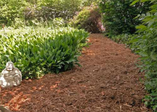 Mulched garden path