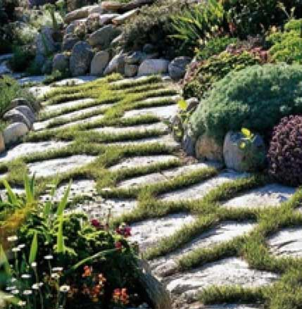 Planted Path using natural paving slabs
