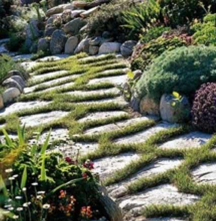 Planted Path using natural paving slabs