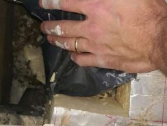 Bridged cavity causing rising damp