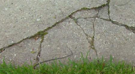 Cracks and damage to concrete path
