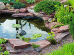 How to Build a Garden Pond and Some Great Garden Pond Ideas