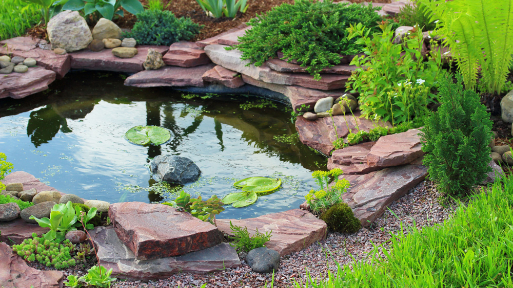 How to Build a Garden Pond | Making a Pond | DIY Doctor on Small Garden Ponds Ideas id=52879