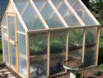 Green house maintenance