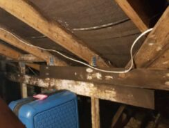 Timber rot caused by damp and condensation in loft